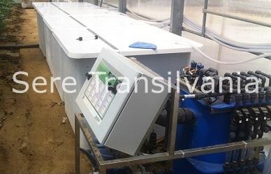 Fertilizarea culturilor de legume în sere, solarii. Sfaturi practice