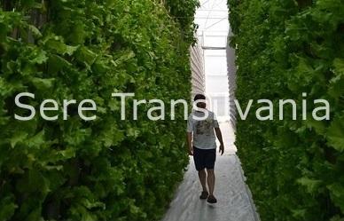 Sistemul hidroclimaponic: hrănind lumea a treia de la distanță
