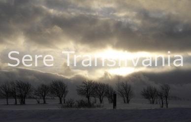 Cum să reducem daunele cauzate de furtuni sau zăpezi asupra serelor/solariilor